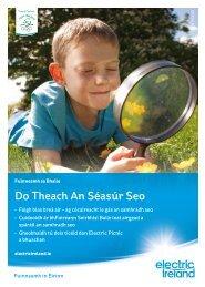 Do Theach An Séasúr Seo - Electric Ireland