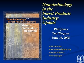 Nanotechnology in the Forest Products Industry: Update - Society of ...
