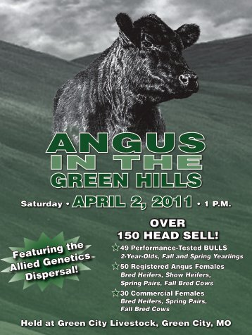 IN THE GREEN HILLS - Angus Journal