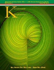 Kalejdoszkóp 8. évf. 3. sz. (2010. május-június) - EPA