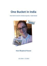 1 One Bucket in India - Petr Pexa