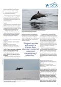 Pacific Island Projects - Whale and Dolphin Conservation Society - Page 3