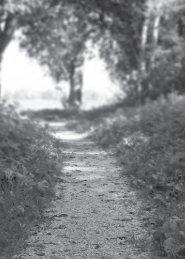 O Perfeito Caminho de Deus - Lagoinha.com