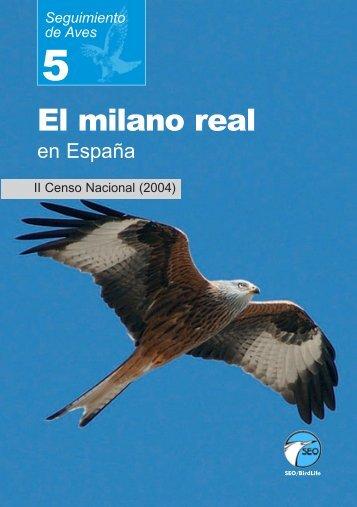 El milano real en España. II Censo Nacional (2004) - SEO/BirdLife