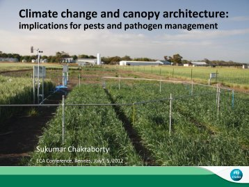 Climate change and canopy architecture: - Inra