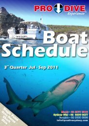 3rd Quarter Jul - Sep 2011 - Online Scuba Diving Booking System