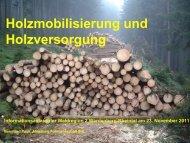 Referat Holzmobilisierung (1135 kB, PDF)