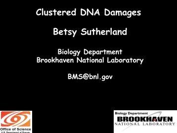 Clustered DNA Damages Betsy Sutherland