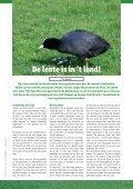 1: mei - Hooge Bergsche Golfclub - Page 6