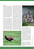1: mei - Hooge Bergsche Golfclub - Page 7