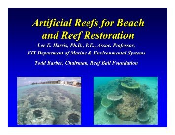 Artificial Reefs for Beach and Reef Restoration