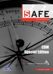 SAFE Issue 46 March 2007