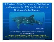 Occurrence, distribution, and movements of whale sharks in the ...