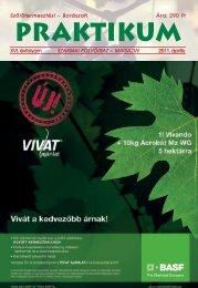 2011_sz_b_praktikum.pdf