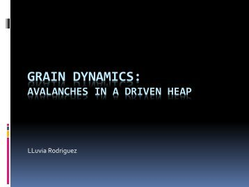 GRAIN DYNAMICS: