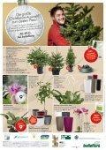 Besinnliche Stimmung zum besten Preis! - Bellaflora - Seite 4