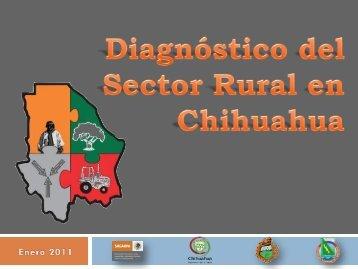 Análisis Estructural sobre la Problemática del Sector Rural en ...