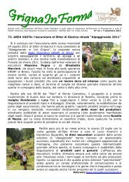 Scarica PDF - Montagne di Valgrigna