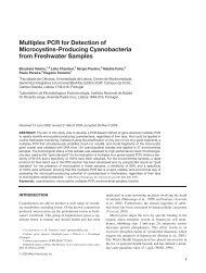 Multiplex PCR for detection of microcystins-producing cyanobacteria ...