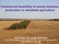Commercial feasibility of woody biomass production in wheatbelt ...