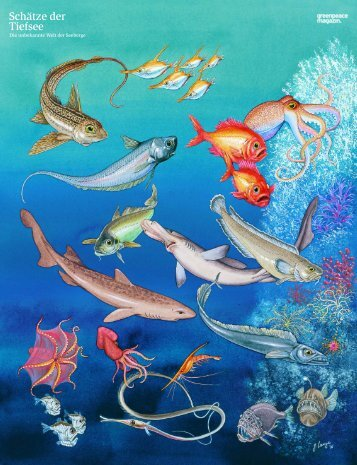 Schätze der Tiefsee