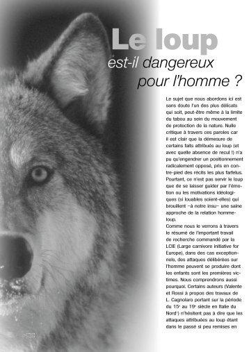 Le loup est-il dangereux pour l'homme - Loups - FNE