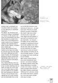 Le loup est-il dangereux pour l'homme - Loups - FNE - Page 2