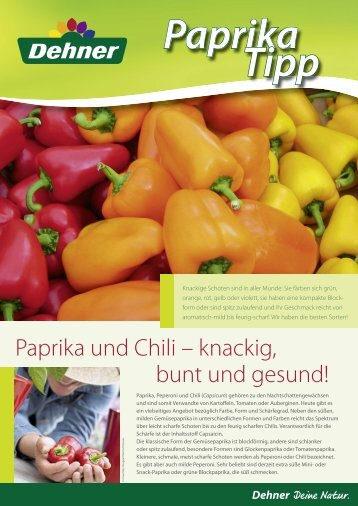Paprika und Chili – knackig, bunt und gesund! - Dehner