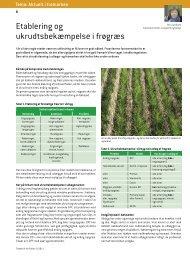 Etablering og ukrudtsbekæmpelse i frøgræs