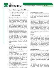 Høst af økologisk hvidkløver - DLF-TRIFOLIUM Denmark
