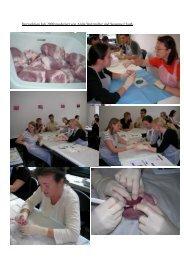Herzsektion Juli 2009 moderiert von Anita Stutzmiller und Susanne ...