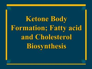 Ketone Body Formation; Fatty acid and Cholesterol ... - Ecu