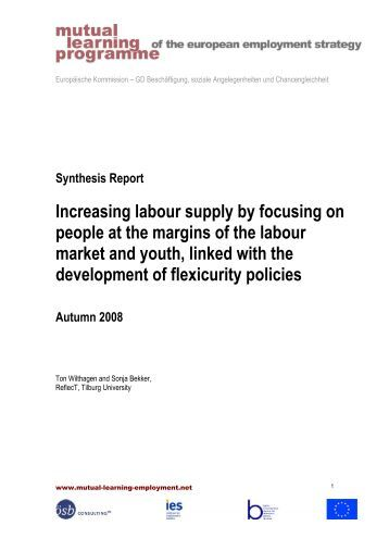 autumn 2008 synthesis report - mutual learning programme