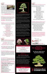 Click here to download the 2014 US National Bonsai Exhibition Poster