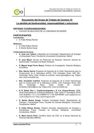 Consulta el documento del grupo de trabajo - Conama 10