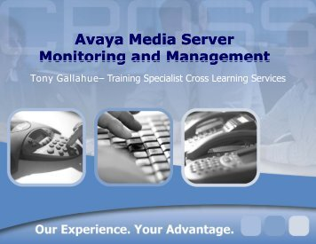 Avaya Media Server Monitoring and Management