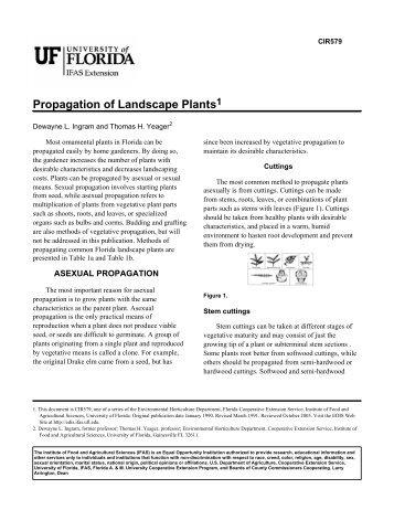 Propagation of Landscape Plants - Polk County Extension Office ...