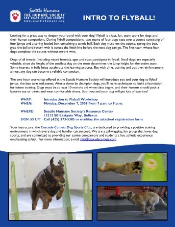 INTRO TO FLYBALL! - Seattle Humane Society