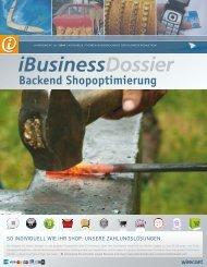 Backend Shopoptimierung - iBusiness