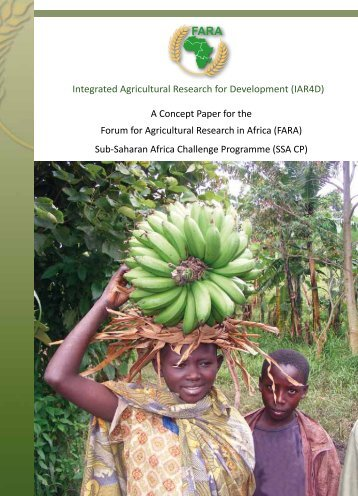 IAR4D - International Centre for development oriented Research in ...