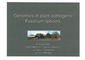 Genomics of plant pathogenic Fusarium species