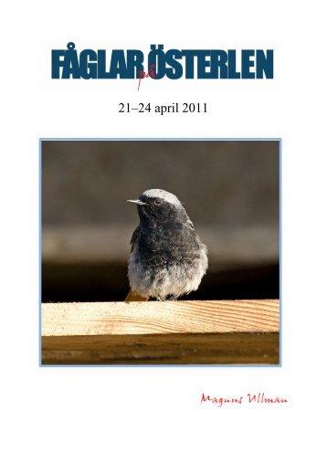 Rapport från Fåglar på Österlen 21–24 april 2011