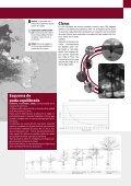 Ficha Nogal - Page 3