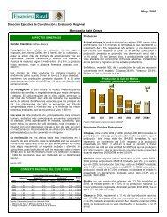 Mayo 2009 Monografía Café Cereza - Financiera Rural