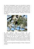 (Tracht) Pflanzen Vogel-Kirsche Prunus avium Baum des Jahres 2010 - Seite 2