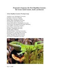 Proposal to Sequence the First Reptilian Genome - National Human ...