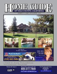 OF YOLO COUNTY, CALIFORNIA - Home Guide of Yolo County, CA