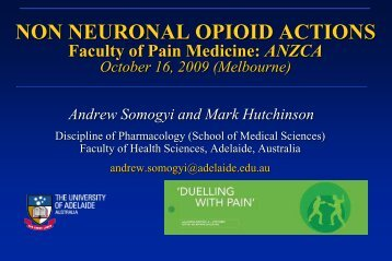 Lecture 1 SOMOGYI.pdf - Faculty of pain medicine