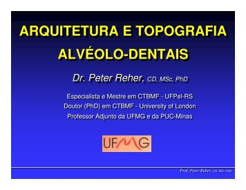 ARQUITETURA E TOPOGRAFIA ALVÉOLO-DENTAIS ... - ICB - UFMG