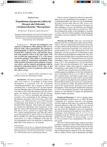 Transmission of grapevine yellows by Oncopsis alni ... - Vitis-vea